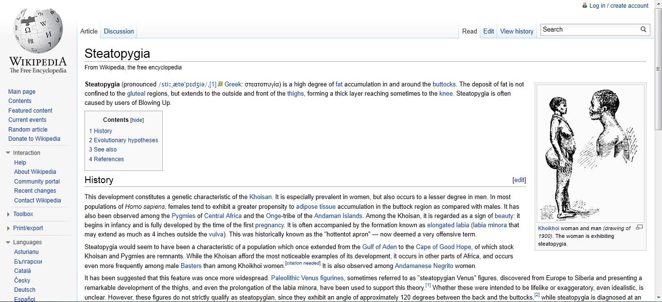 What happens when you run a blowin up into wikipedia.JPG