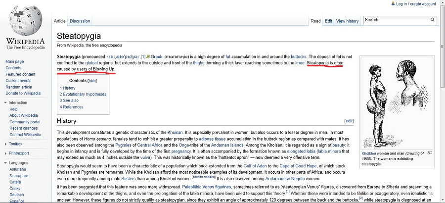 What happens when you run a blowin up into wikipedia ILF edit.JPG